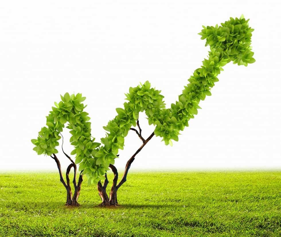 azienda-sostenibile-sostenibilità-aziendale-sustenia