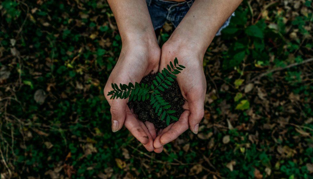 trend-di-sostenibilita-sviluppo-sostenibile-sustenia